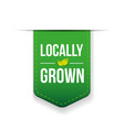 Locally Grown green ribbon vector image vector image