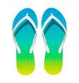 pair bright flip-flops on white background vector image
