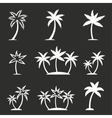 Palm tree icon set vector image vector image
