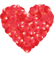 red roses petal heart vector image vector image