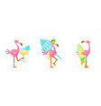 set cute pink flamingo drink cocktail carry vector image vector image