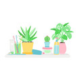 shelf in bathroom with plants and gygiene vector image