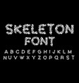 skeleton font letters anatomy bones abc skull and vector image vector image