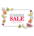 summer sale poster with stylized fruits and sale vector image vector image