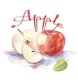 watercolor apple fruit label with the inscription vector image vector image