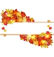 Autumn banner with leaves vector image