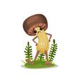 funny mushroom character cute boletus with human vector image vector image