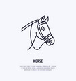 horse cute pony flat line icon logo for vector image vector image