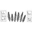 malt doodle sketsh ears of barley beer bar vector image vector image