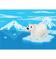 polar bear and snowy mountain vector image