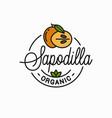 sapodilla fruit logo round linear slice vector image vector image