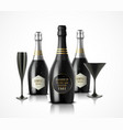 wineglass and champagne wine bottles vector image vector image