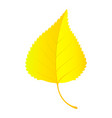 birch leaf icon flat style vector image vector image