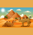 cartoon of two camel in the desert vector image