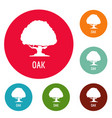 oak tree icons circle set vector image vector image