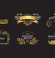 set of gold luxury logos vector image