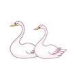 The two of swans vector image vector image