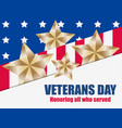 veterans day 11th of november honoring all who vector image