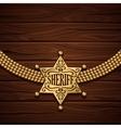 Sheriff Badge Design vector image