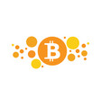 bitcoin icon design vector image
