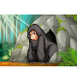 Chimpanzee standing in front of the cave vector image vector image