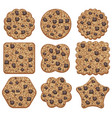 set of chocolate chip cookies of different shapes vector image vector image
