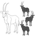 set of with oryx antelope vector image