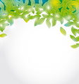 Summer branch with Fresh green leaves on white vector image