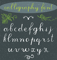 Alphabet letters lowercase hand drawn calligraphy vector image