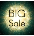Big sale banner Explosion with gold glitter vector image