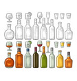 set glass and bottle whiskey wine tequila vector image