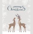 deer christmas card vector image