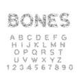 bones alphabet letters anatomy skeleton font vector image vector image
