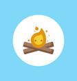 bonfire icon sign symbol vector image vector image