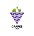 Grapes logo Wine vine logo Grapes logo vector image vector image