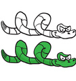 green snake vector image vector image