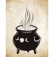 boiling magic cauldron vector image