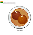Gulab Jamun or Indian Dessert Balls vector image
