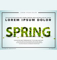 spring lettering flyer made from fresh green leafs vector image