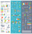 infographic elements for business in vector image