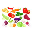 organic fresh vegetables in cartoon style vector image