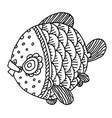 richly decorated fish hand drawing vector image vector image