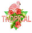 tropical banner with flamingo vector image vector image