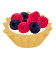 dessert cake tartlet with cream raspberry and vector image
