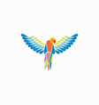 parrots ara macao template vector image