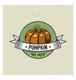 pumpkin vintage set of labels emblems or logo for vector image vector image