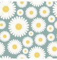 seamless pattern chamomile vector image vector image