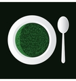 spinach soup vector image