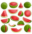 watermelon icons set cartoon style vector image vector image