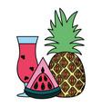 watermelon pineapple juice tropical fruit vector image vector image